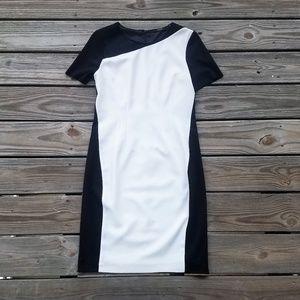 NEW Tahari Emory Fresh Pear Dress